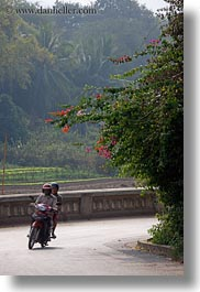 asia, bikes, bougainvilleas, curve, laos, luang prabang, motorcycles, transportation, vertical, photograph