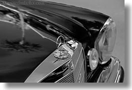 asia, benz, black, black and white, cars, horizontal, laos, luang prabang, mercedes, nature, palm trees, plants, reflections, transportation, trees, photograph