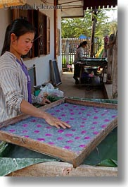 asia, flowers, laos, luang prabang, tray, vertical, weaving village, womens, photograph