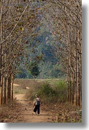 asia, hmong, laos, men, trees, vertical, villages, walking, photograph