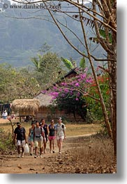 asia, flowers, hiking, hmong, laos, people, tourists, trees, vertical, villages, photograph