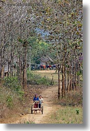 asia, carts, hmong, laos, pushing, trees, two, vertical, villages, womens, photograph