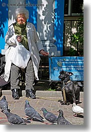 animals, asia, birds, blues, city scenes, colors, dogs, moscow, old, pigeons, russia, vertical, womens, photograph