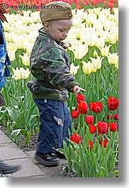 asia, beret, boys, childrens, clothes, colors, flowers, hats, moscow, nature, people, red, russia, tulips, vertical, photograph