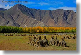 asia, barley, foliage, horizontal, landscapes, lhasa, mountains, stacks, tibet, trees, photograph