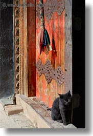 asia, asian, cats, doors, style, tibet, tsong sten gampo monastery, vertical, yarlung valley, photograph