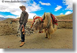 asia, asian, horizontal, men, people, tibet, yaks, yumbulagang, photograph