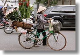 asia, bicycles, bikes, flowers, hanoi, horizontal, vietnam, photograph