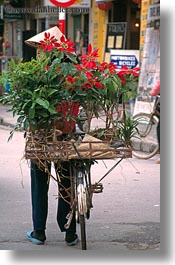 asia, bicycles, bikes, flowers, hanoi, vertical, vietnam, photograph