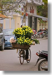 asia, bicycles, bikes, flowers, hanoi, vertical, vietnam, yellow, photograph