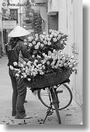 asia, bikes, black and white, flowers, hanoi, pink, vendors, vertical, vietnam, yellow, photograph