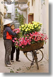 asia, bikes, flowers, hanoi, pink, vendors, vertical, vietnam, yellow, photograph