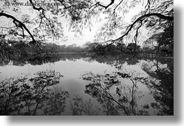 asia, black and white, branches, hanoi, horizontal, lakes, reflections, vietnam, water, photograph