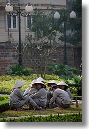 asia, conical, gardeners, gardening, grey, hanoi, hats, people, vertical, vietnam, white, womens, photograph