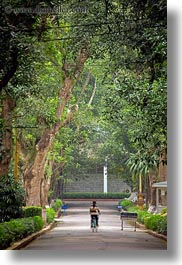 asia, hanoi, presidential palace, slow exposure, trees, tunnel, vertical, vietnam, photograph