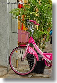 asia, bicycles, bikes, hoi an, pink, plants, vertical, vietnam, photograph