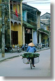 asia, bicycles, bikes, hoi an, riding, vertical, vietnam, womens, photograph