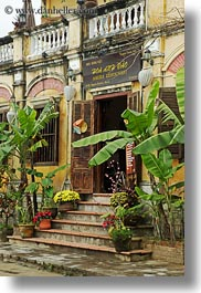 asia, buildings, hoi an, palm trees, restaurants, vertical, vietnam, photograph