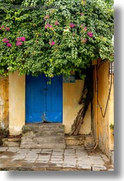 asia, covered, doors, flowers, hoi an, vertical, vietnam, photograph