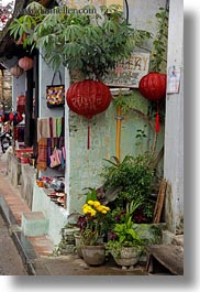 asia, flowers, hoi an, lanterns, red, vertical, vietnam, photograph