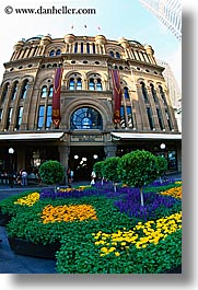 australia, buildings, flowers, nature, queen victoria, structures, sydney, vertical, photograph