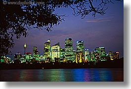 australia, branches, buildings, cityscapes, horizontal, nature, nite, plants, space needle, structures, sydney, trees, photograph