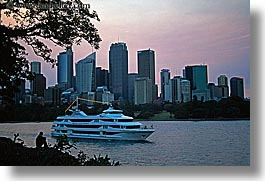 australia, boats, branches, buildings, cityscapes, cruise ships, horizontal, nature, plants, structures, sydney, transportation, trees, photograph