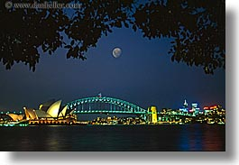 australia, branches, bridge, harbor bridge, horizontal, moon, nature, nite, opera house, plants, sky, structures, sydney, trees, photograph