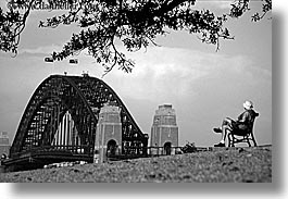 australia, black and white, branches, bridge, dans, harbor bridge, horizontal, men, nature, people, plants, structures, sydney, trees, photograph