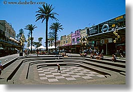 australia, chessboard, horizontal, manly beach, nature, palm trees, plants, stores, sydney, trees, photograph