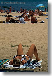 australia, beaches, manly beach, people, sexy, sunbathers, sunbathing, sydney, tourists, vertical, womens, photograph