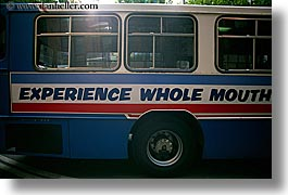 australia, bus, experience, horizontal, mouth, signs, sydney, transportation, wheels, whole, photograph