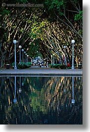 australia, fountains, lamp posts, nature, plants, reflections, shade tree, streets, structures, sydney, trees, tunnel, vertical, water, photograph