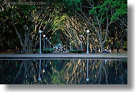australia, fountains, horizontal, lamp posts, nature, plants, reflections, shade tree, structures, sydney, trees, tunnel, water, photograph