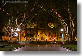 australia, branches, buildings, churches, horizontal, lights, nature, nite, plants, religious, st marys cathedral, structures, sydney, trees, photograph