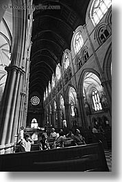 australia, black and white, buildings, churches, pews, religious, st marys cathedral, structures, sydney, vertical, photograph