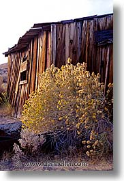 bodie, california, exteriors, ghost town, state park, vertical, west coast, western usa, photograph