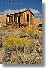 bodie, california, exteriors, ghost town, houses, state park, vertical, weeds, west coast, western usa, photograph