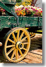 bridgeport, california, coach, flowers, stage, vertical, west coast, western usa, wheels, photograph