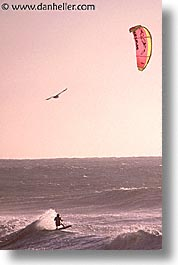 cal coast, california, california coast, half moon bay, para, surfers, vertical, west coast, western usa, photograph