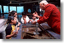 aquarium, cal coast, california, california coast, childrens, horizontal, learning, monterey, west coast, western usa, photograph