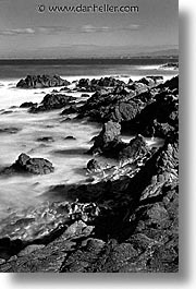 black and white, cal coast, california, california coast, monterey, seashore, vertical, west coast, western usa, photograph