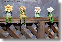 california, cambria, flowers, horizontal, sitting, west coast, western usa, photograph