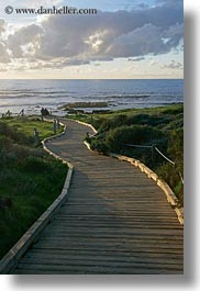 california, cambria, ocean, paths, planks, vertical, west coast, western usa, woods, photograph