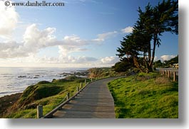 california, cambria, horizontal, ocean, paths, planks, west coast, western usa, woods, photograph