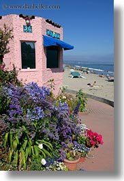 california, capitola, flowers, hotels, vertical, victorian hotel, victorians, west coast, western usa, photograph