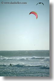california, coastal views, kite surfing, kites, surfing, vertical, west coast, western usa, photograph