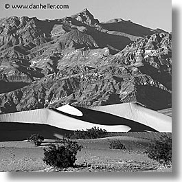 black and white, california, death valley, dunes, mountains, national parks, square format, west coast, western usa, photograph