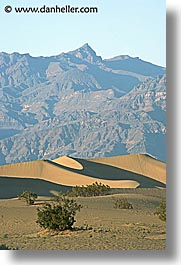 california, death valley, dunes, mountains, national parks, vertical, west coast, western usa, photograph