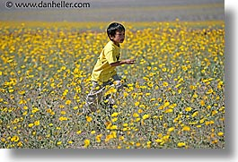 boys, california, childrens, death valley, horizontal, landscapes, national parks, people, west coast, western usa, wildflowers, photograph